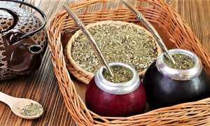 Парагвайский чай мате (матэ) — яркая экзотика